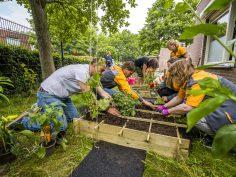 Tuinierplezier voor kinderen Ipse de Bruggen dankzij HORNBACHhelpt