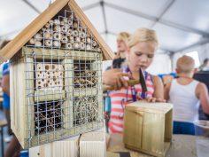 Kinderen bouwen insectenhotels tijdens Jeugdland